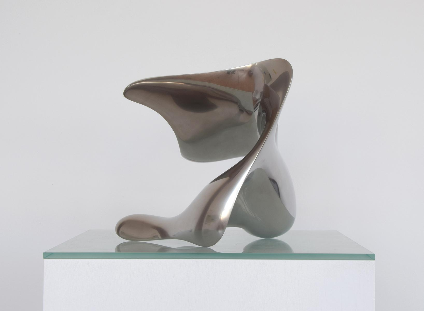 """trans-dimensional object_""""transition""""_stainless steel_3"""