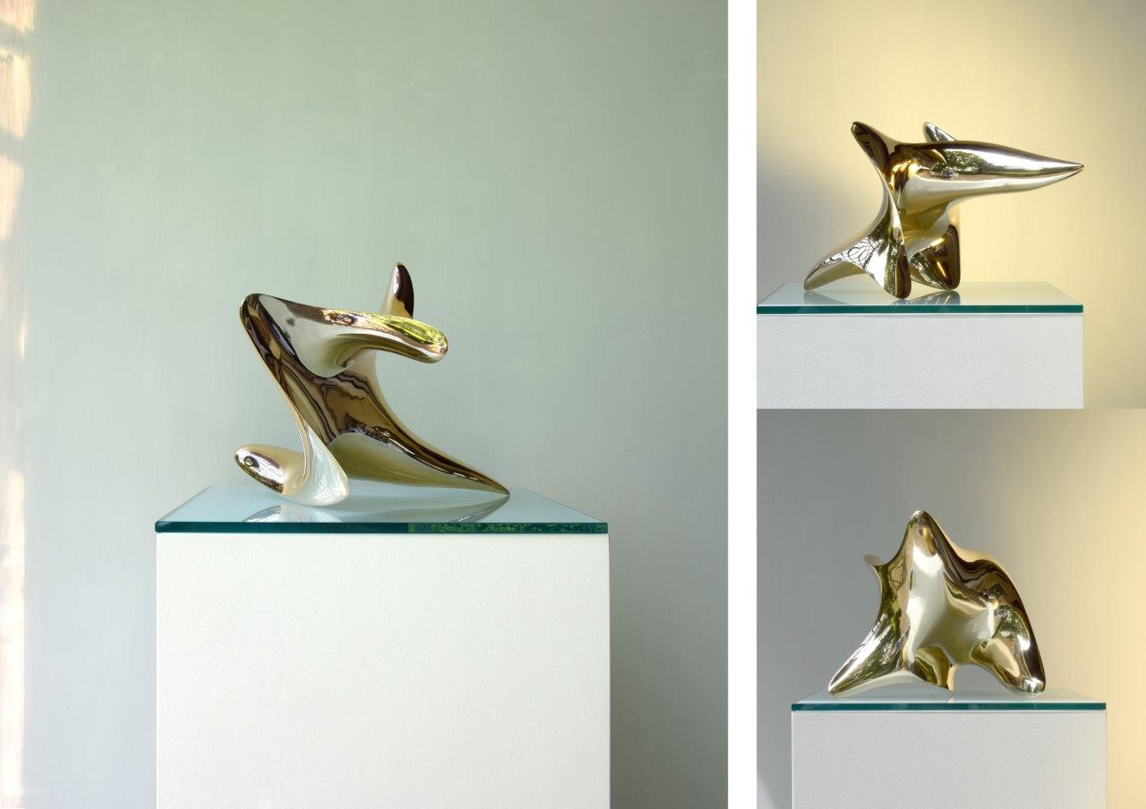 "trans-dimensional object ""nimbus"" Bronze polished"