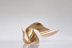 "trans-dimensional object ""evolution"" Bronze polished"